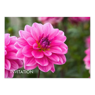 Pink Dahlia DSC4614 13 Cm X 18 Cm Invitation Card