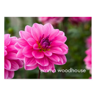 Pink Dahlia DSC4614 Pack Of Chubby Business Cards