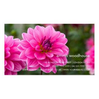 Pink Dahlia DSC4614 Pack Of Standard Business Cards