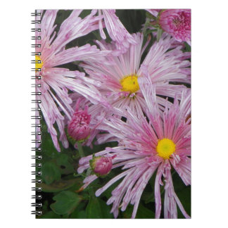 Pink Flower Photo Gift Notebooks
