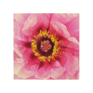 Pink Flower Print Wood Print
