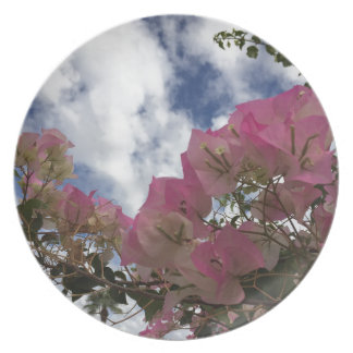 pink flowers against a blue sky plate