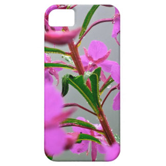 Pink flowers iPhone 5 covers