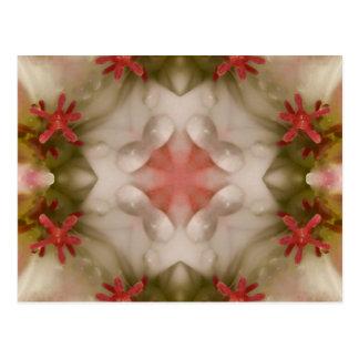 Pink Geranium Kaleidoscope Postcard
