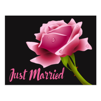 Pink Just Married Floral Rose Wedding Announcement Postcard