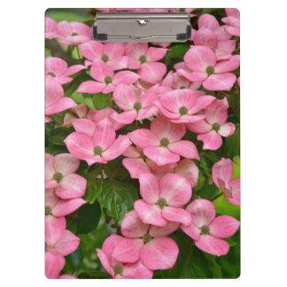 Pink kousa dogwood flowers clipboard