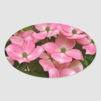 Pink kousa dogwood flowers print oval sticker