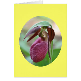 Pink Lady Slipper Orchid Flower Photography Card