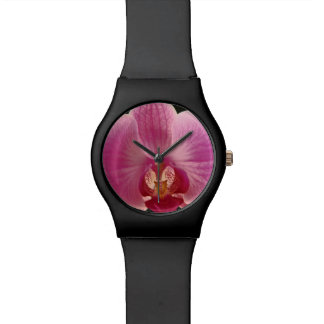 Pink Moth Orchid Flower Wristwatch