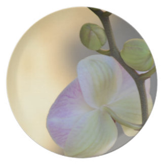 Pink Orchid Expression Plate