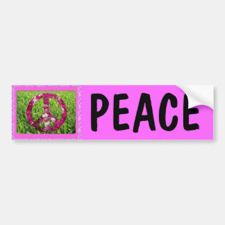 Pink Peace Bumper Sticker