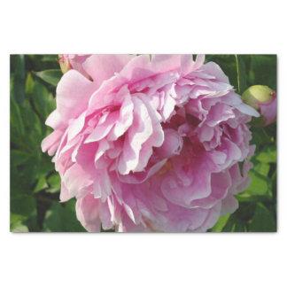 Pink Peonies Tissue Paper