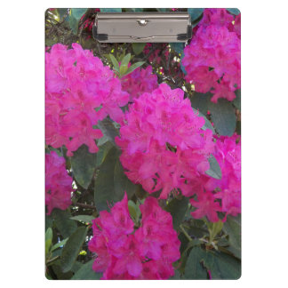 Pink Rhododendrons Floral Clipboard