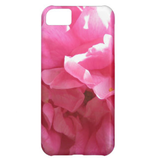 Pink Rose Iphone5 Case