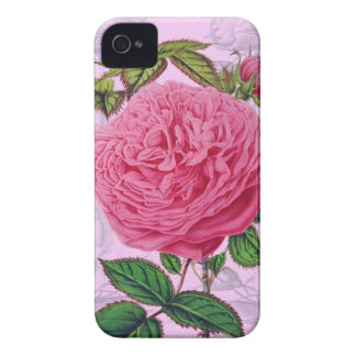 Pink Rose Romance iPhone 4 Cover