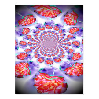 Pink Rose Swirling Post Cards