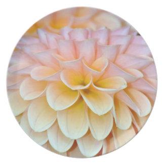 Pink summer dahlia plate