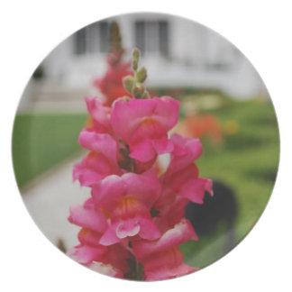 Pink Sweet Pea Flowers - Plate