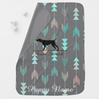 Pink & Teal Arrow Pattern Puppy Blanket