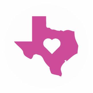 Pink Texas Standing Photo Sculpture