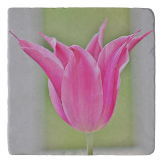 Pink tulip photo on trivet