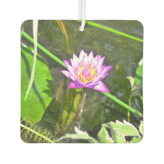 Pink Water Lily Air Freshener
