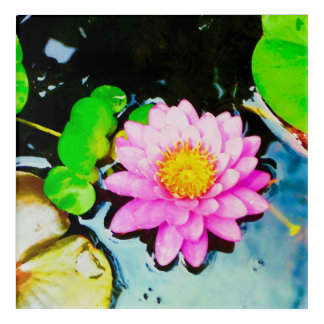 Pink Waterlily in Watercolor Acrylic Print