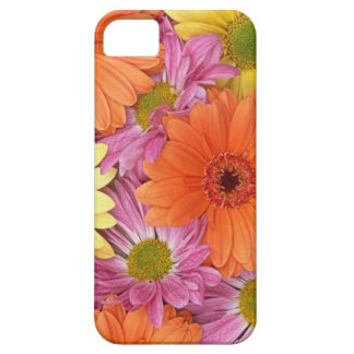 pink, yellow and orange Gerbera daisies iPhone 5 Covers