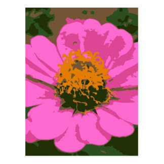 Pink Zinnia Postcard