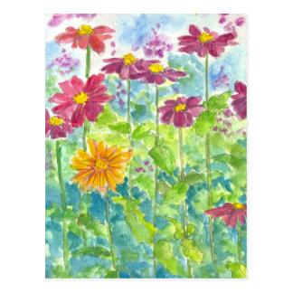 Pink Zinnia Wildflower Watercolor Garden Art Postcard