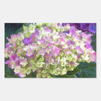 Pistachio Color Hydrangea Rectangular Sticker