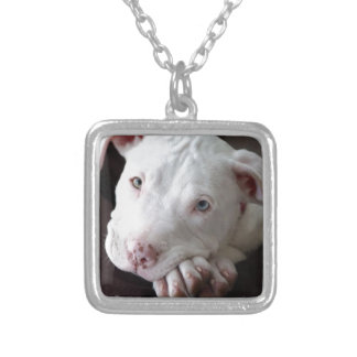 pit_bull_filhote.jpg square pendant necklace