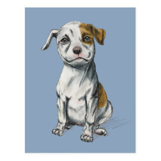 Pit Bull Puppy Sketch Drawing Postcard