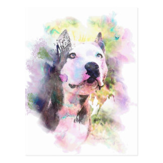 Pit Bull Water Color Postcard