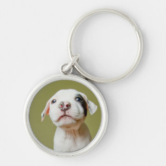 Pit Bull With Black Spotted Eye Key Ring