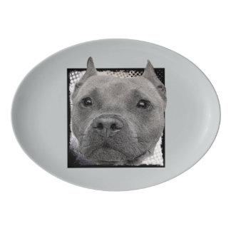 Pitbull dog platter porcelain serving platter