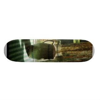 Pitcher Near Window Skate Board Deck