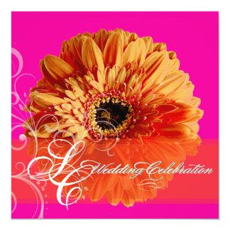 PixDezines orange Gerbera/diy pink background 13 Cm X 13 Cm Square Invitation Card