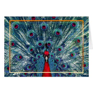 PixDezines peacock/diy font/teal+red Card