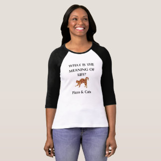 Pizza & cats are the meaning of life tee shirt