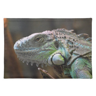 Placemate with head of colourful Iguana lizard Placemat