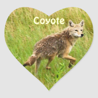 Plains Coyote Wildlife Animal Art Heart Sticker