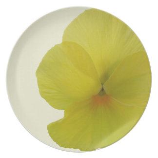 Plate - Bearded Lemon Pansy