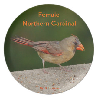 Plate showing the female Northern Cardinal