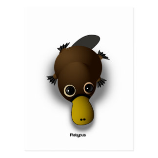 platypus postcard
