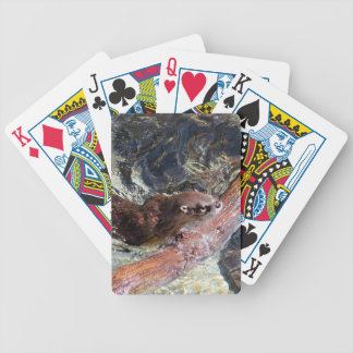 Playful Otter Bicycle Playing Cards