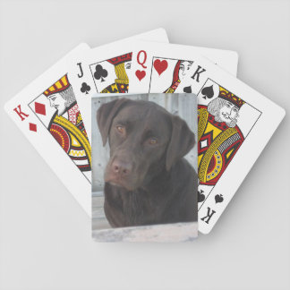 Playing Cards - Chocolate Lab