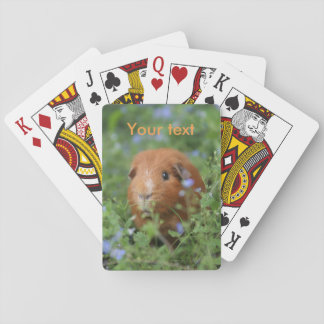 Playing cards with cute ginger guinea pig cavy