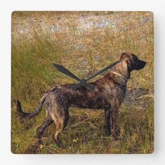 Plott Hound Hunting Dog Wall Clock
