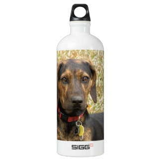 Plott Hound SIGG Traveller 1.0L Water Bottle